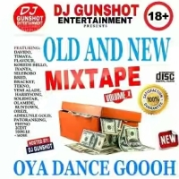 Mixtape : Dj GunShot -Old and New Mixtape (vol 1)